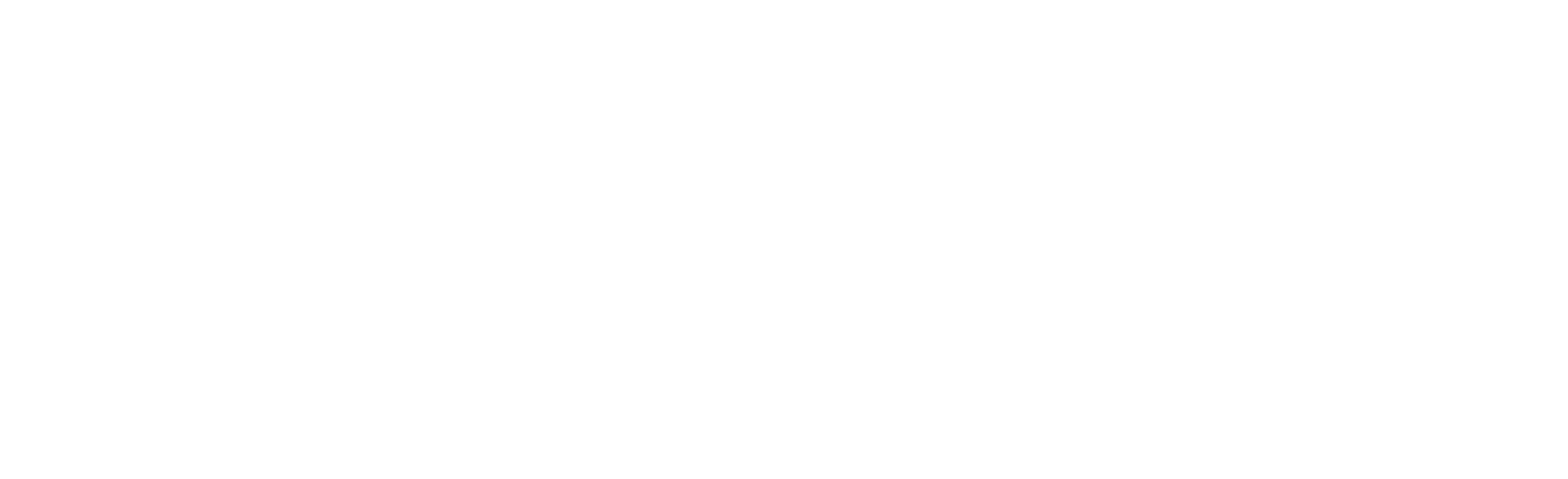 Aviva Darab