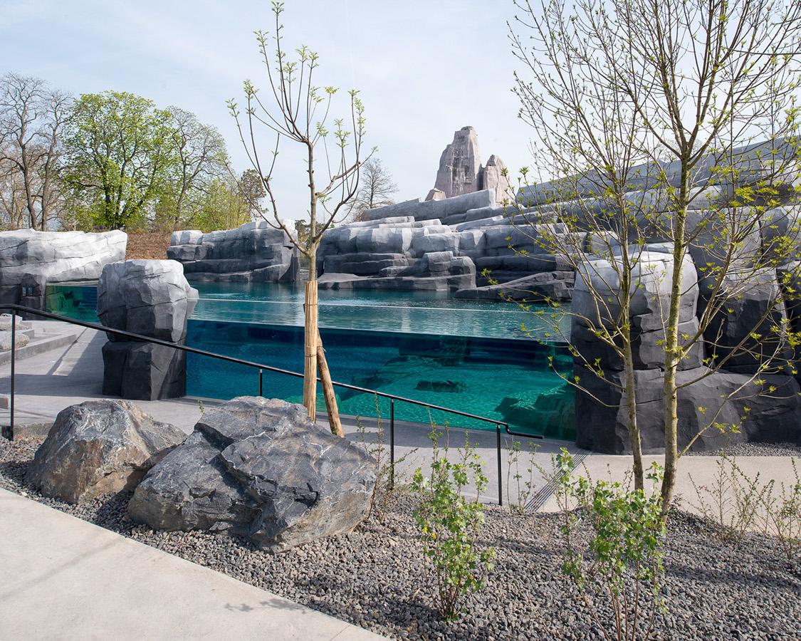 martin argyroglo photographe nouveau parc zoologique de paris. Black Bedroom Furniture Sets. Home Design Ideas