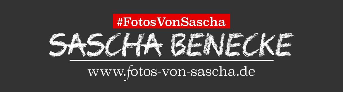 Sascha Benecke
