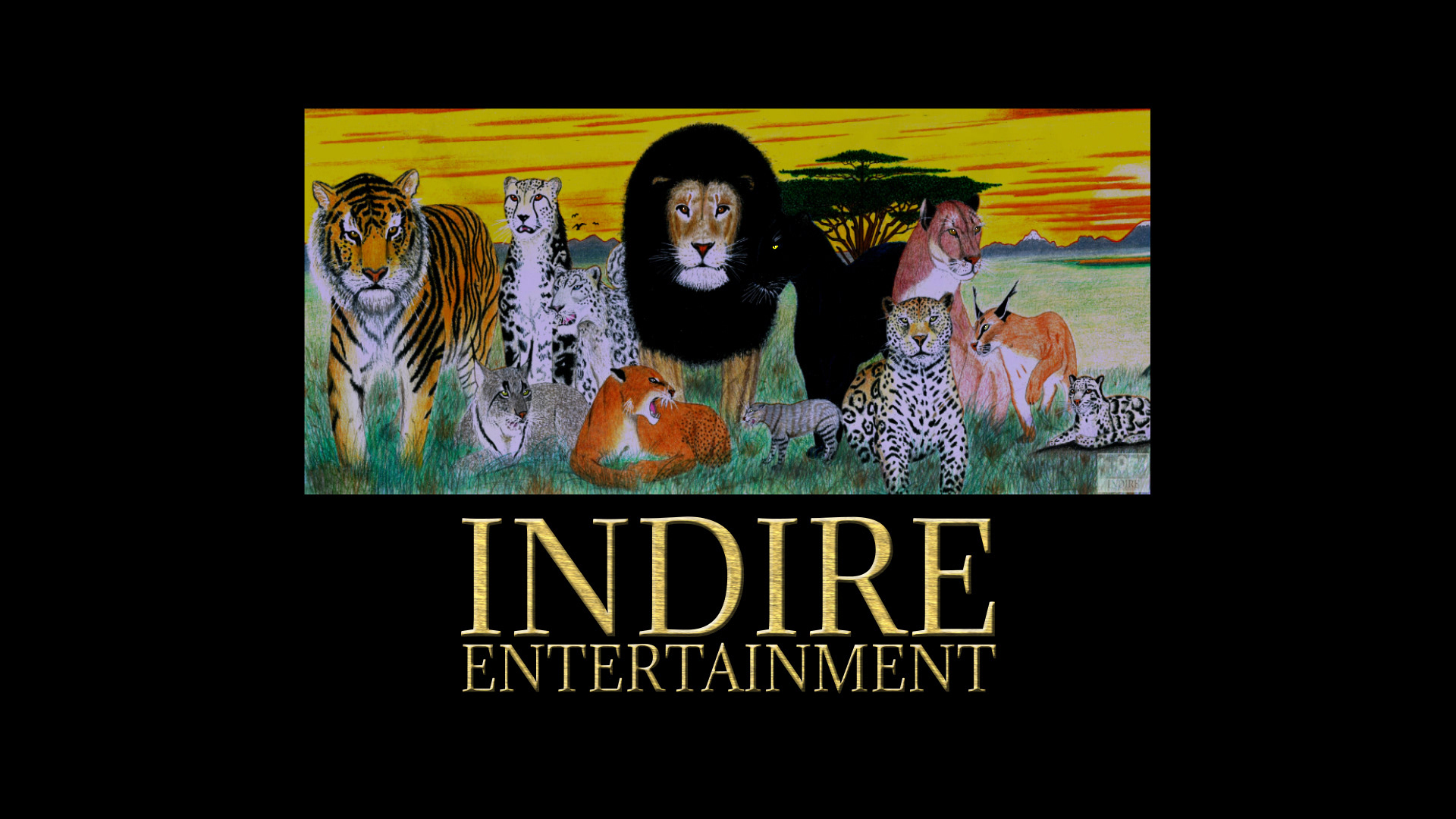 Indire Entertainment