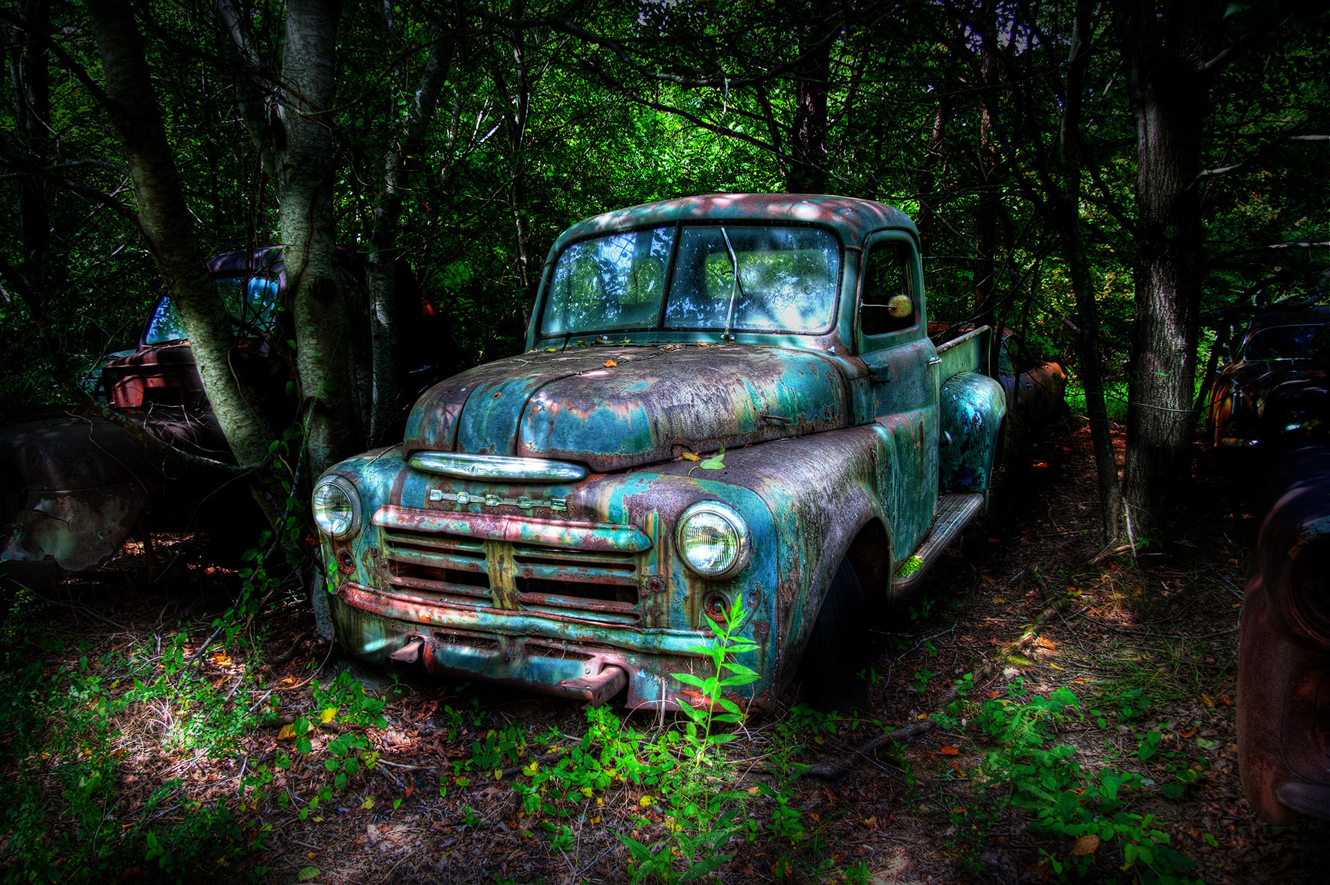 Doug Cross - Cars and Trucks