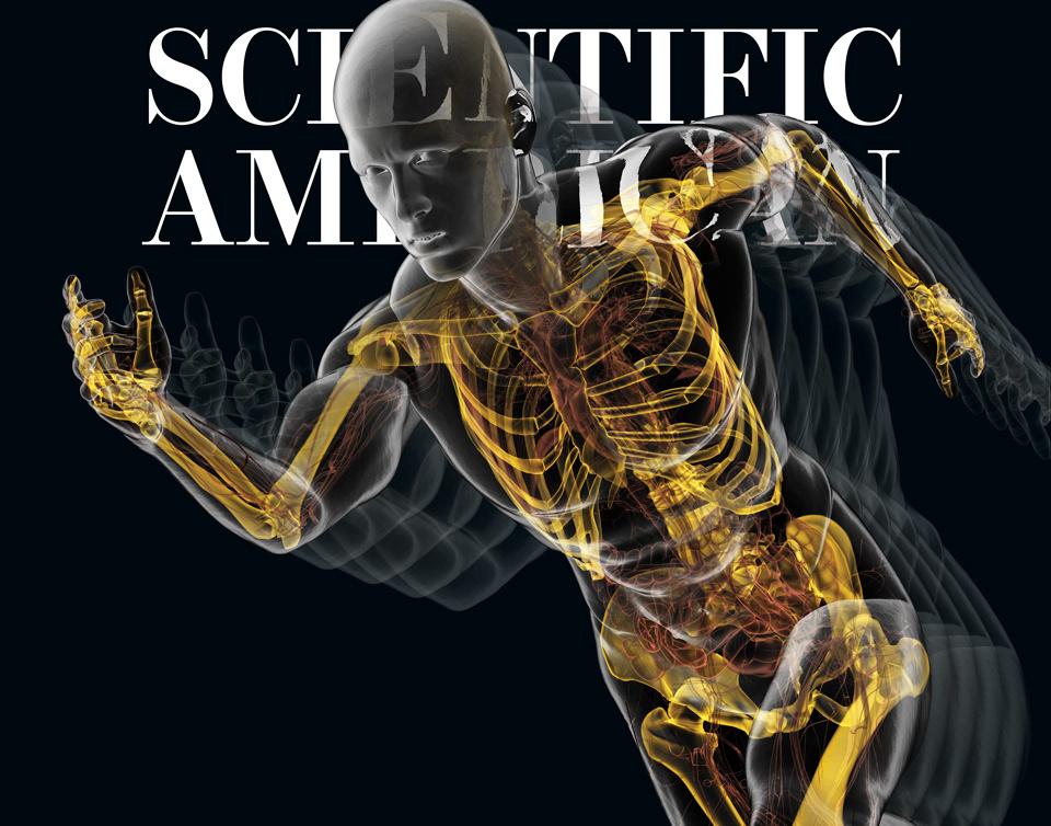 BRYAN CHRISTIE DESIGN - Human Anatomy