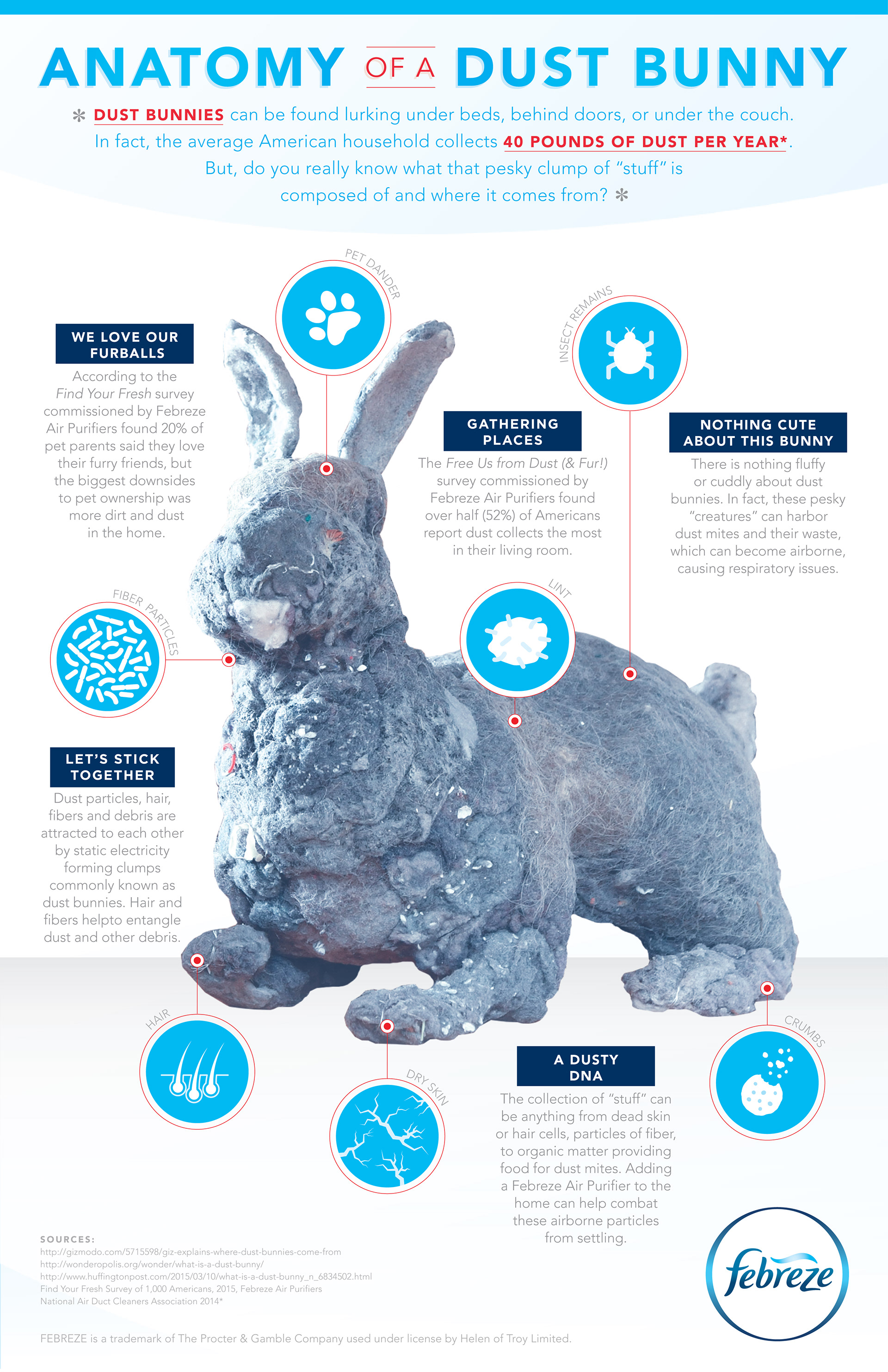 Victoria Call Design - Febreze: Anatomy of a Dust Bunny Infographic