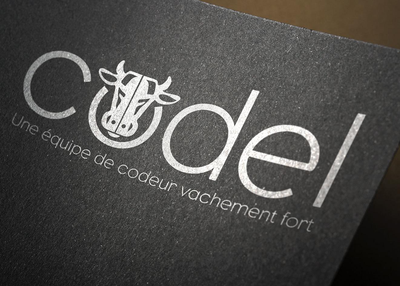 loolye labat graphiste webdesigner graphisme logo identit visuelle codel france. Black Bedroom Furniture Sets. Home Design Ideas