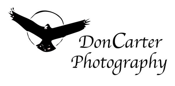 Don Carter