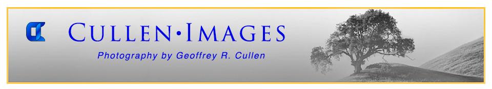 Cullen Images