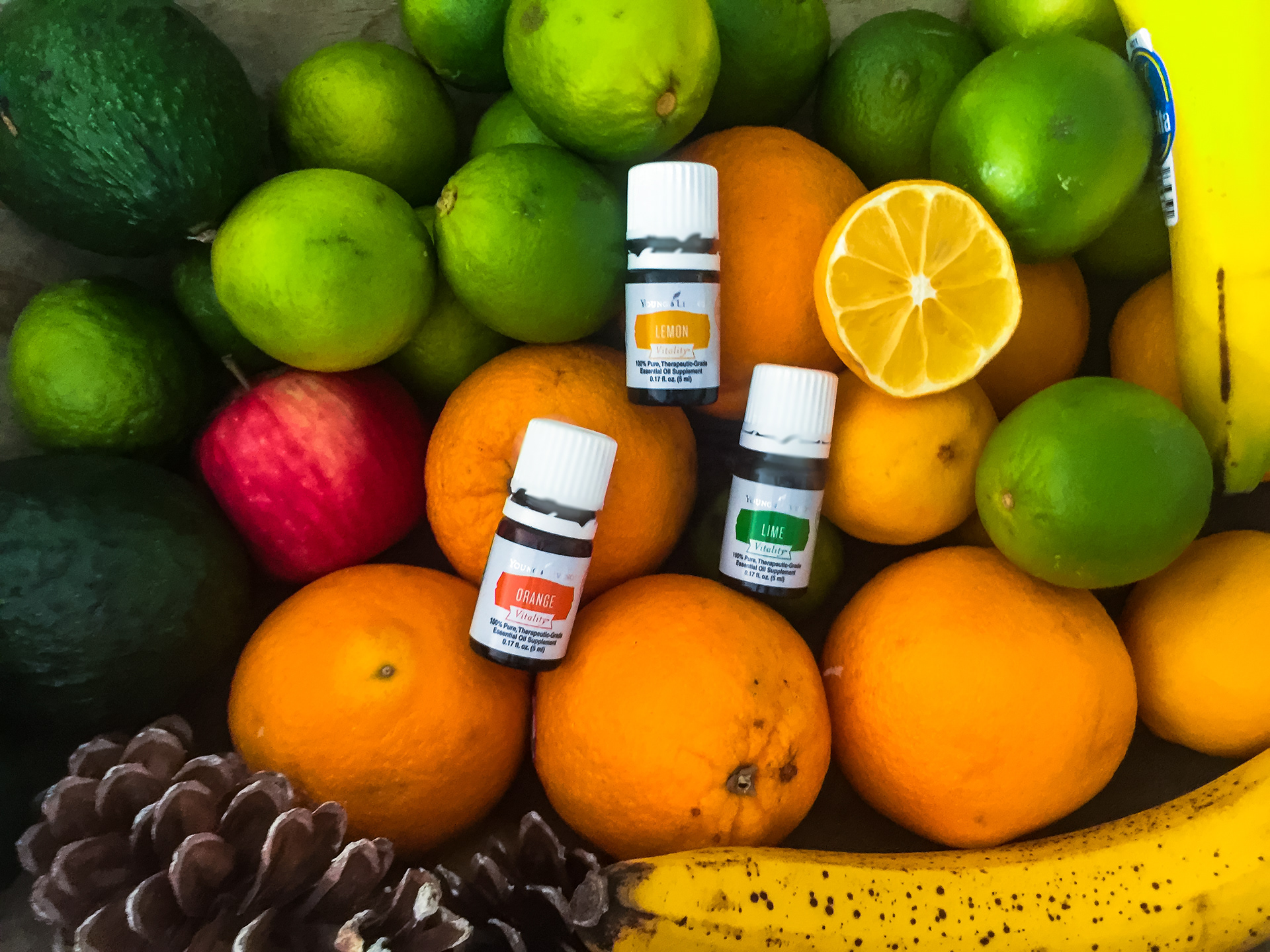 lacey miklosovic - Young Living Essential oils