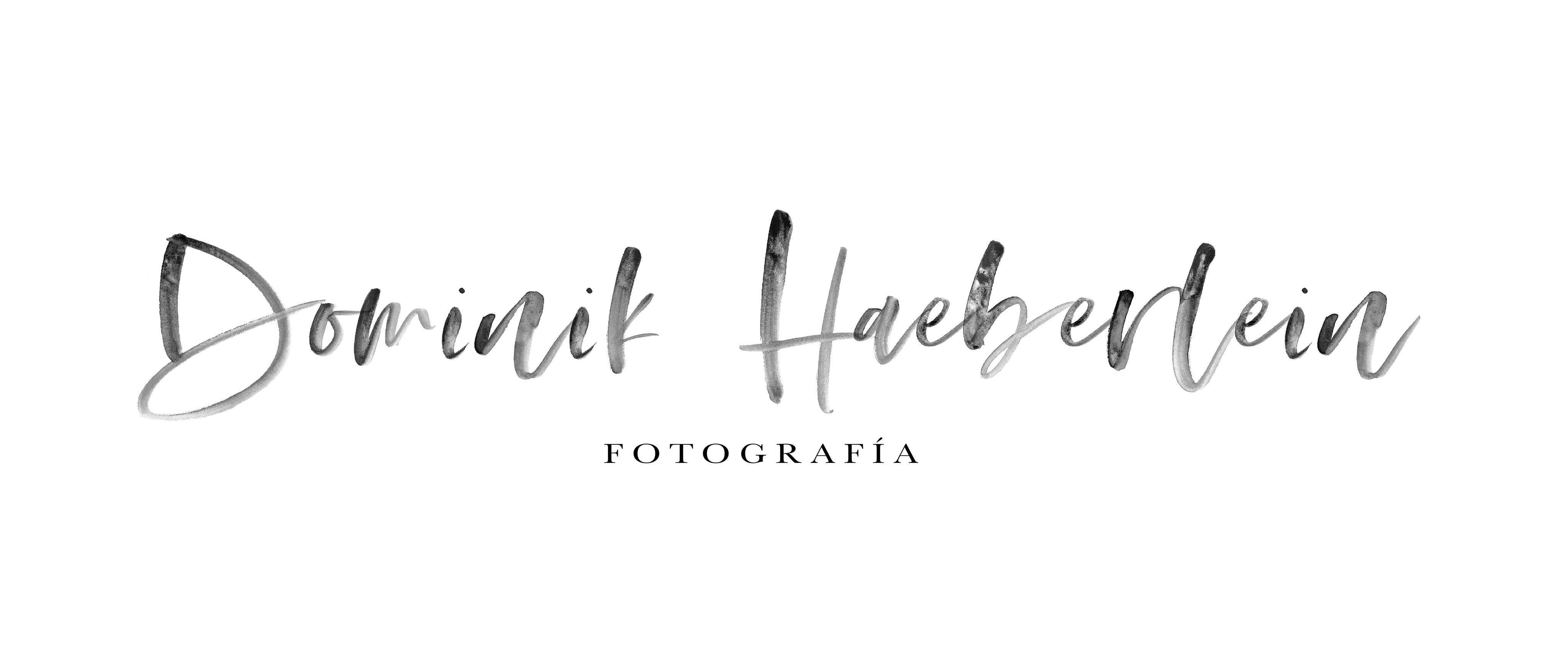 DOMINIK HAEBERLEIN