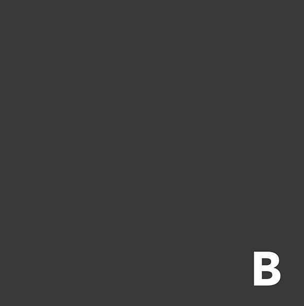 Kelly Brito