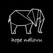 Hope Ndlovu