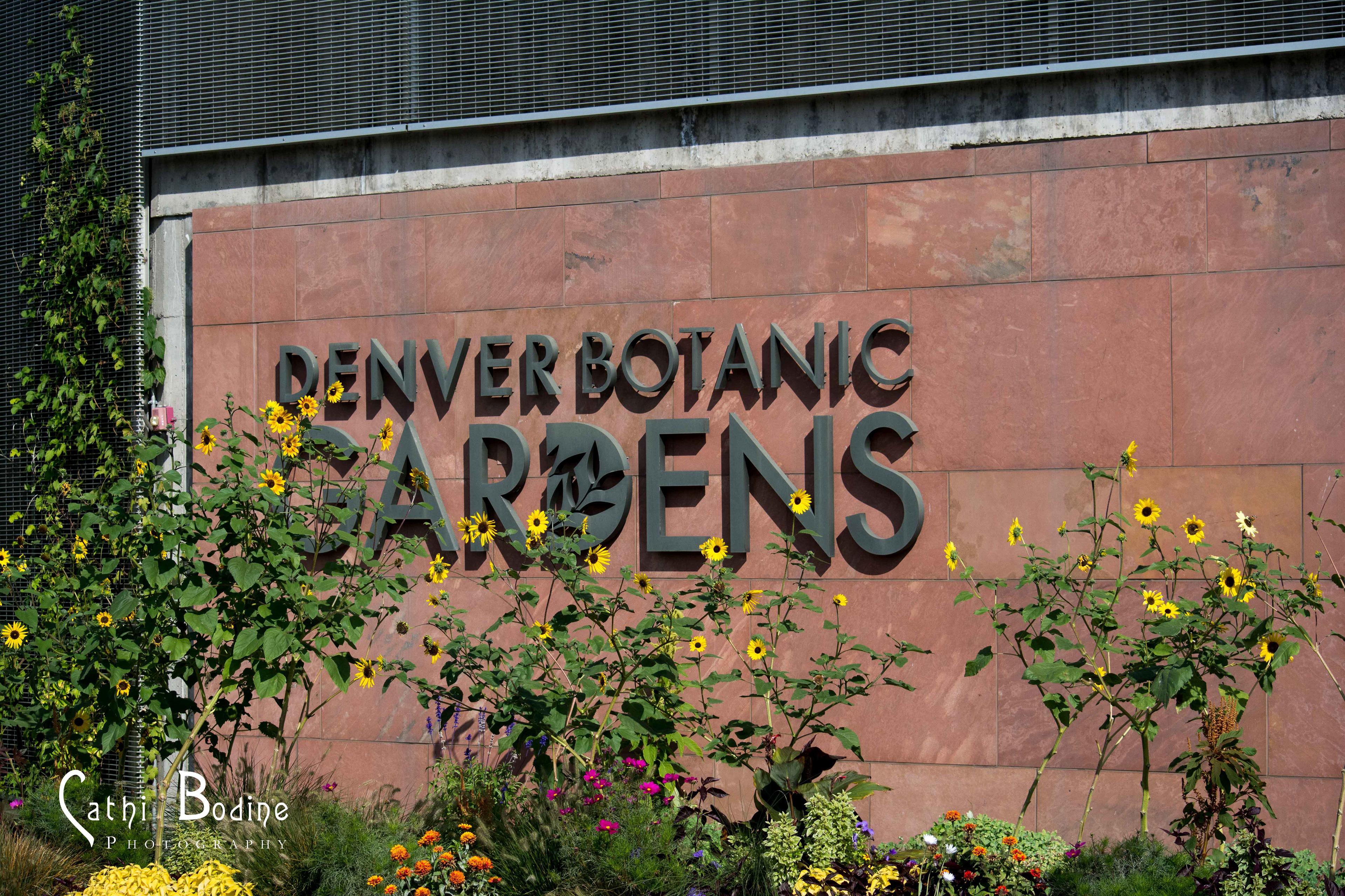 Cathi Bodine - Denver Botanic Gardens