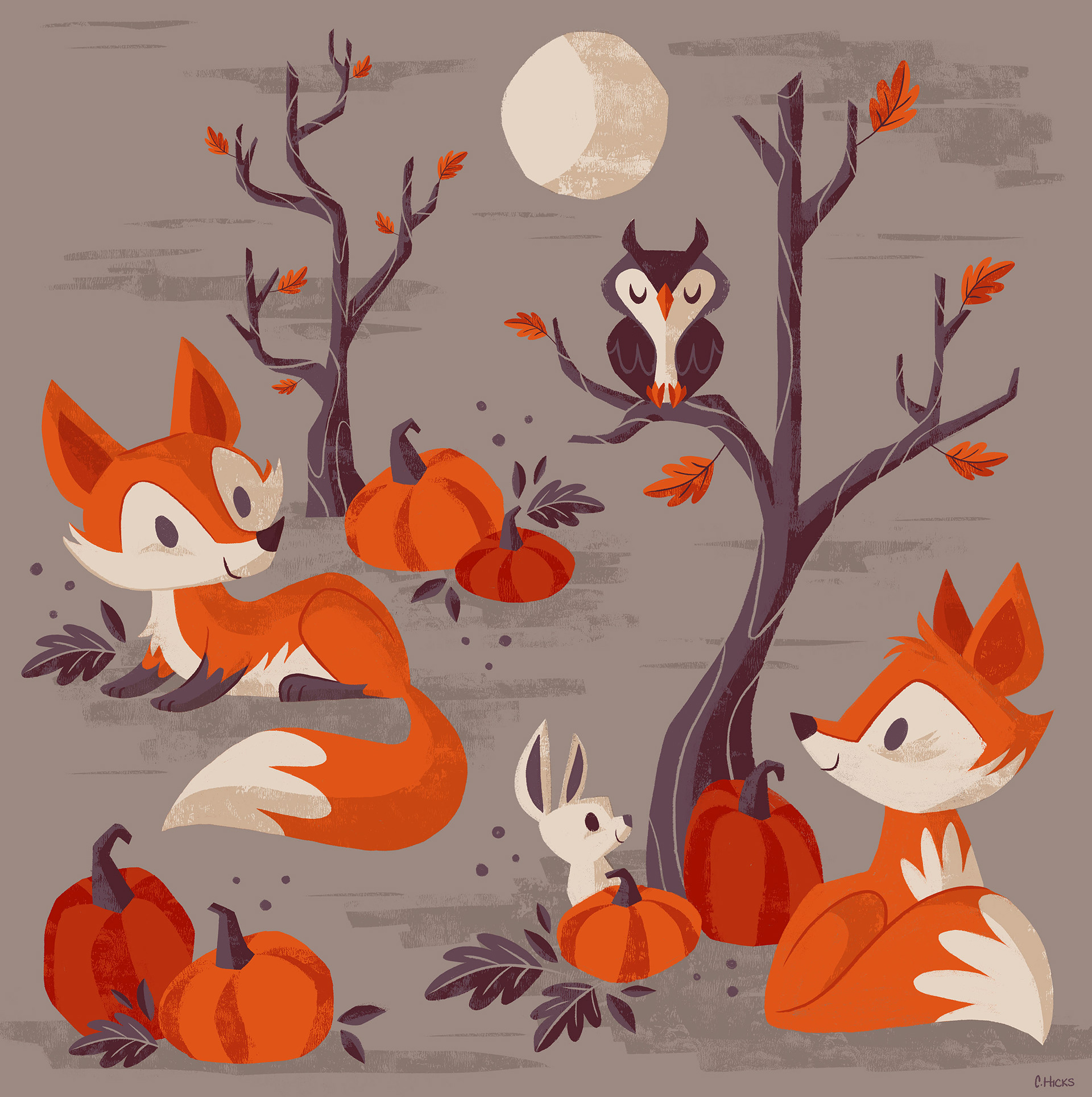 caley hicks fall foxes