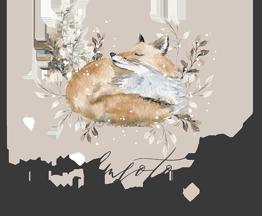 svadobný fotograf cenník